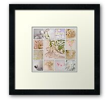 Photo Collage By Sandra Foster  Framed Print