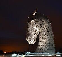 Kelpie in the dark by Pete Johnston