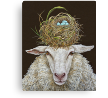 Judith the Sheep with nest Canvas Print