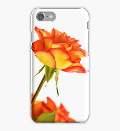 Autumn Splendor Rose iPhone Case/Skin