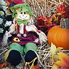 Little Miss Scarecrow by Susan S. Kline