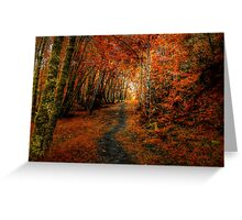 Trails In The Woods ~ Old Santiam Wagon Road ~ Greeting Card