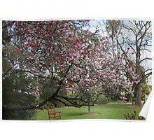 Botanical Gardens Poster