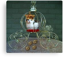 I CAN BE THE PURRFECT QUEEN OR THE QUEEN OF DENIAL>FELINE>CAT PICTURE Canvas Print