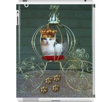 I CAN BE THE PURRFECT QUEEN OR THE QUEEN OF DENIAL>FELINE>CAT PICTURE iPad Case/Skin
