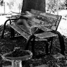 Haunted Bench by Lisa Taylor