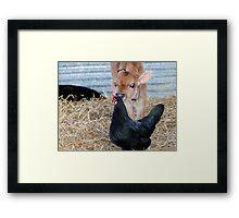 Calfeteria Grooming Service For Hens - NZ Framed Print