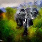 Uganda: Slick Ivory by Ted Byrne