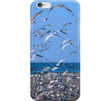 Flock of Seagulls iPhone Case/Skin
