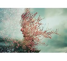 Cherry Blossom Double Exposure  Photographic Print