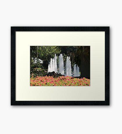 Botanical Gardens Darwin - Water fountain Framed Print