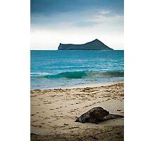 Beach in Oahu Photographic Print