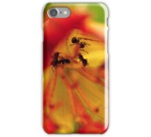 Exploring ants iPhone Case/Skin