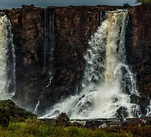 Iguaza Falls - No. 8 by photograham