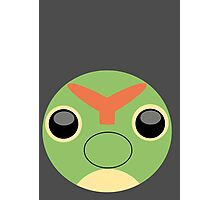 Caterpie Ball Photographic Print