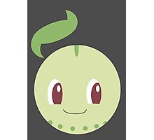 Chikorita Ball Photographic Print