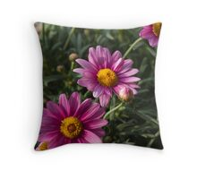 colored daisy in spring Throw Pillow