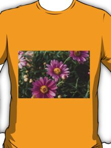 colored daisy in spring T-Shirt
