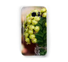succulent plant Samsung Galaxy Case/Skin