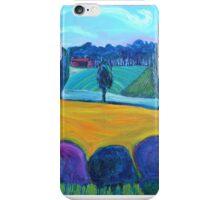 South Road Vinyard 1  iPhone Case/Skin