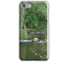 willow brook iPhone Case/Skin