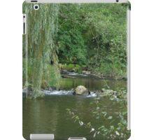 willow brook iPad Case/Skin