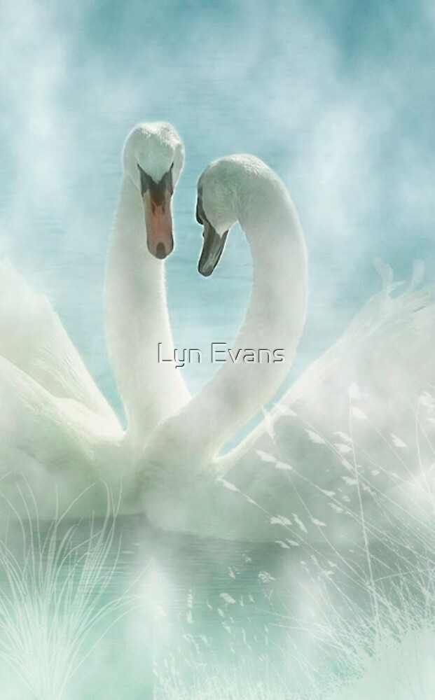 Love in the mist by Lyn Evans