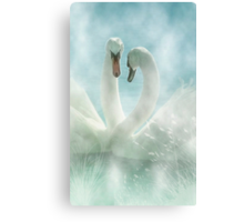 Love in the mist Canvas Print