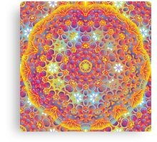 Psychedelic jungle kaleidoscope ornament 15 Canvas Print