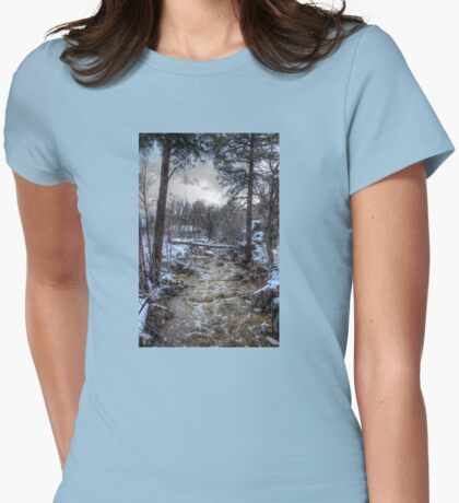 After the Winter Storm Womens Fitted T-Shirt