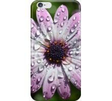 Daisy Droplets iPhone Case/Skin