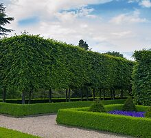 Formal gardens by chris2766