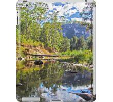 CARNARVON GORGE iPad Case/Skin