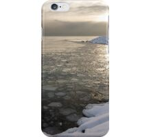 Mini Ice Floes on the Lake iPhone Case/Skin
