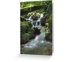 Waterfall,Lamington National Park, Queensland, Australia  Greeting Card