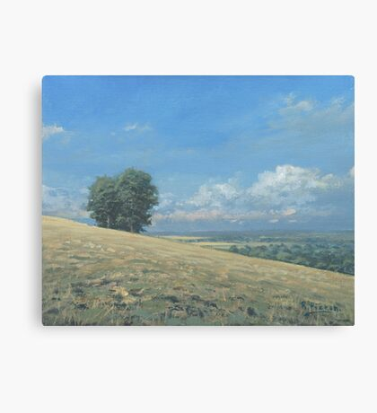 View from the Henley Road Canvas Print