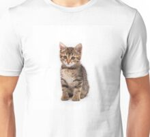 Little cute tabby kitten isolated on white background Unisex T-Shirt