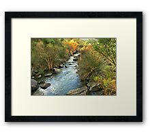 Wando river Framed Print