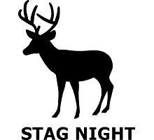 Stag Night Photographic Print