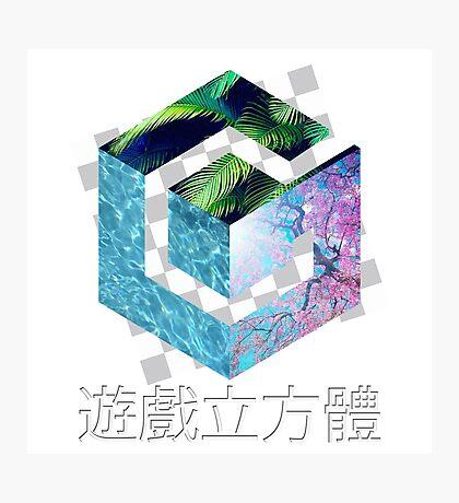Gamecube Aesthetic  Photographic Print