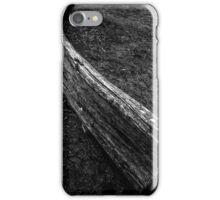 Driftwood Arc iPhone Case/Skin