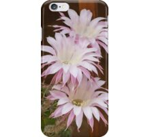 scenic flower of a cactus plant iPhone Case/Skin