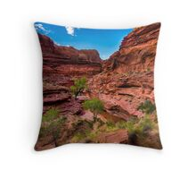 Coyote Gulch At Sunset - Grand Staircase - Escalante - Utah Throw Pillow