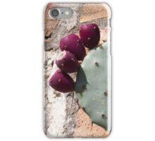 cactus in bloom iPhone Case/Skin