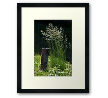 Pipe and Plant Framed Print