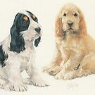English Cocker Spaniel Puppies by BarbBarcikKeith