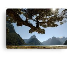 Milford Sound Canvas Print