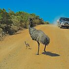 Edward the Emu and Family by Penny Smith
