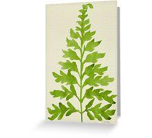 Lime Fern Greeting Card