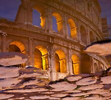 Colosseum reflection by scottimage